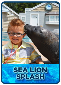 Sea Lion Splash Kids Program in Milwaukee, WI